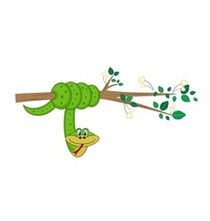 Snake hanging on tree branch vector