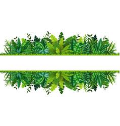 A tropical rainforest banner vector
