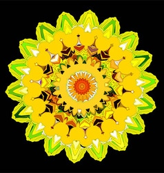 Beautiful Deco color Mandala vector image