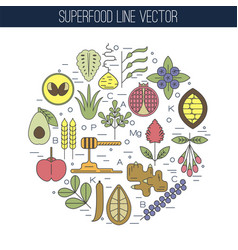 color superfood line icons round vector image vector image