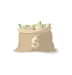 Paper money in bag icon vector