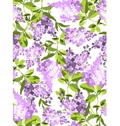 Seamless pattern with lilac flowers vector