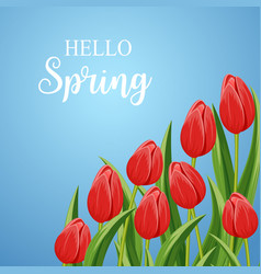 spring banner with blooming tulip and copy space vector image