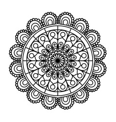 Monochrome flower mandala vintage decorative vector