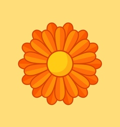 Orange flower vector