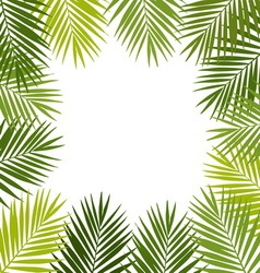 Palm leaf silhouettes frame Tropical leaves vector image vector image