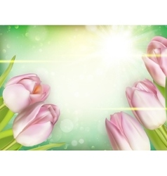 Tulips on a blurred background EPS 10 vector image