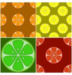Backgrounds citrus fruit vector