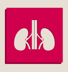 Human anatomy kidneys sign grayscale vector