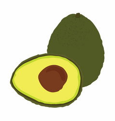 Big avocado isolated on white background vector