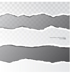 ripped paper torn stripe on transparent background vector image