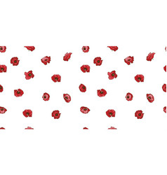 Seamless pattern with red poppy flowers isolated vector