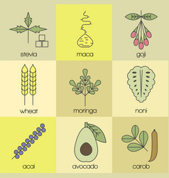superfood color line icons set color background vector image vector image