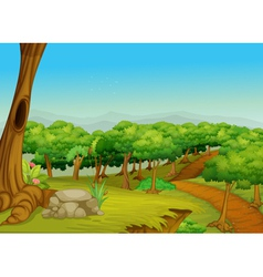 Lovely forest path vector