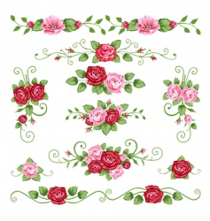 roses collection vector image vector image