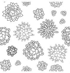 Succulent garden monochrome doodle seamless vector image vector image