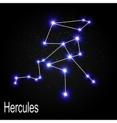 Hercules constellation with beautiful bright stars vector