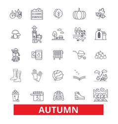autumn fall foliage season cold weather vector image