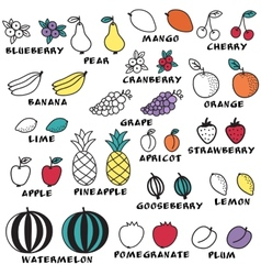 Set of doodle fruits - for scrapbook or design vector image
