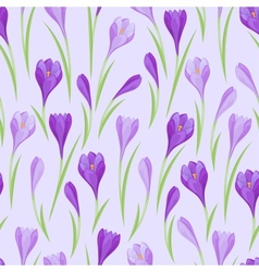 Spring flowers crocus natural seamless pattern vector