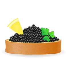 Caviar 08 vector