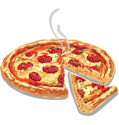 hot pizza salami vector image