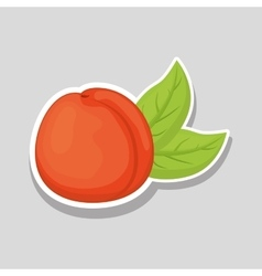 Peach icon design vector