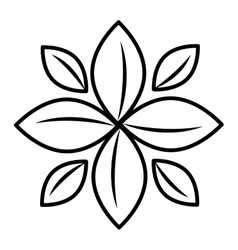 Isolated plant flower graphic vector