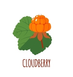 Cloudberry icon in flat style on white background vector