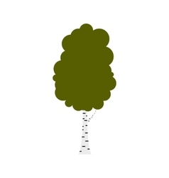 Birch tree icon flat style vector