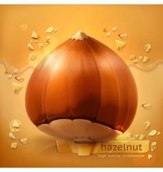 Hazelnut background vector