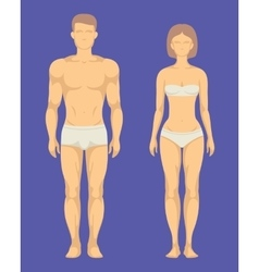 Healthy body of man and woman flat set vector image