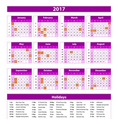 Year Planner Calendar 2017 - International vector image vector image