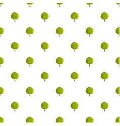 Beech tree pattern seamless vector
