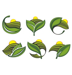 Ecological and nature symbols vector image