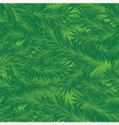Fir tree seamless pattern vector