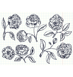 simplicity rose set vector image