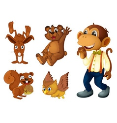 Brown animal collection vector image vector image