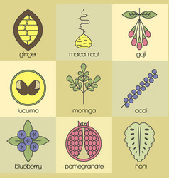 color superfood line icons set color background vector image