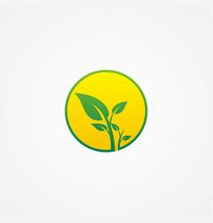 plant green leaf organic beauty logo vector image vector image