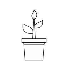 Potted plant icon outline style vector image