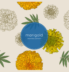 orange marigolds hand draw sketch vector image vector image