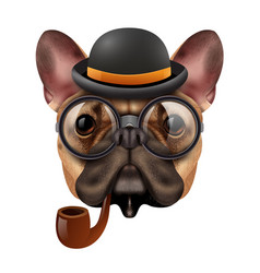 realistic vintage hipster bulldog composition vector image