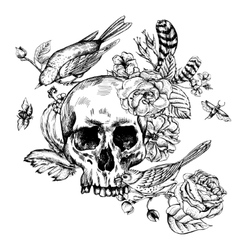 Skull with flowers roses birds and feathers vector