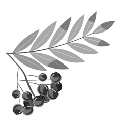 Rowan branch icon gray monochrome style vector