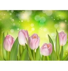 Tulips growing on green bokeh EPS 10 vector image