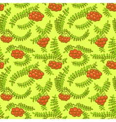 Rowan berry floral botany seamless pattern vector