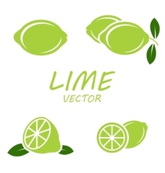Flat lime icons set vector