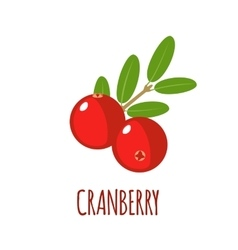 Cranberry icon in flat style on white background vector