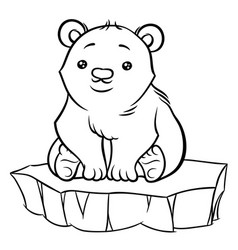 Cute cartoon baby polar bear vector